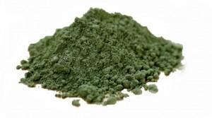 Spirulina Algae